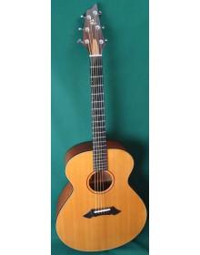 Breedlove SJ/MH Acoustic Guitar