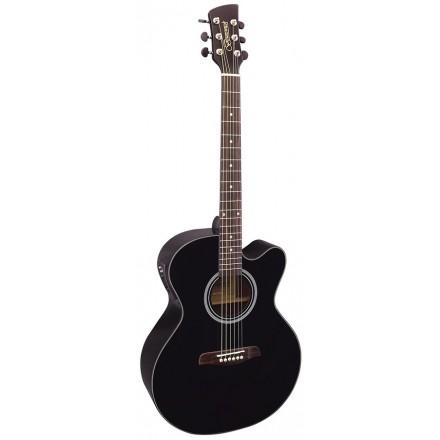 Brunswick BTK-50 Electro-Acoustic