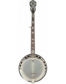 Fender Concert Tone 58 5 String Banjo