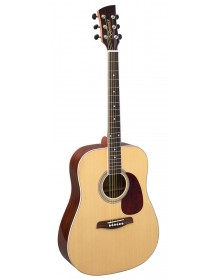 Brunswick  BD-200 Acoustic