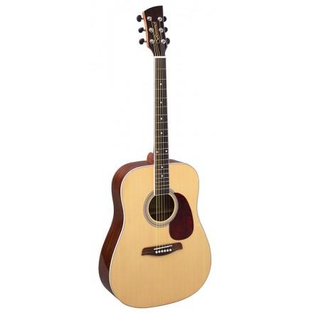 Brunswick  BD-200 Acoustic
