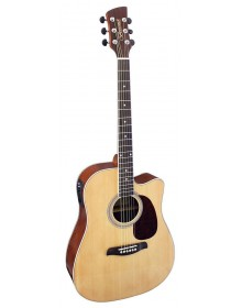 Brunswick  BD-200 CE Electro Acoustic