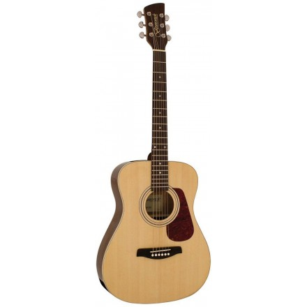 Brunswick  BF-200 Acoustic