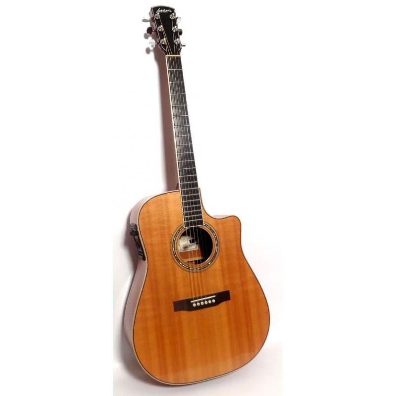 Larrivee DV-05 Acoustic Guitar