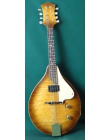 Tony Revell Electric Solid Body  Mandolin,